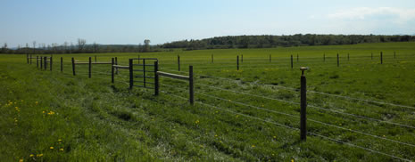 Homestead Fence Company Offering Quality Fence
